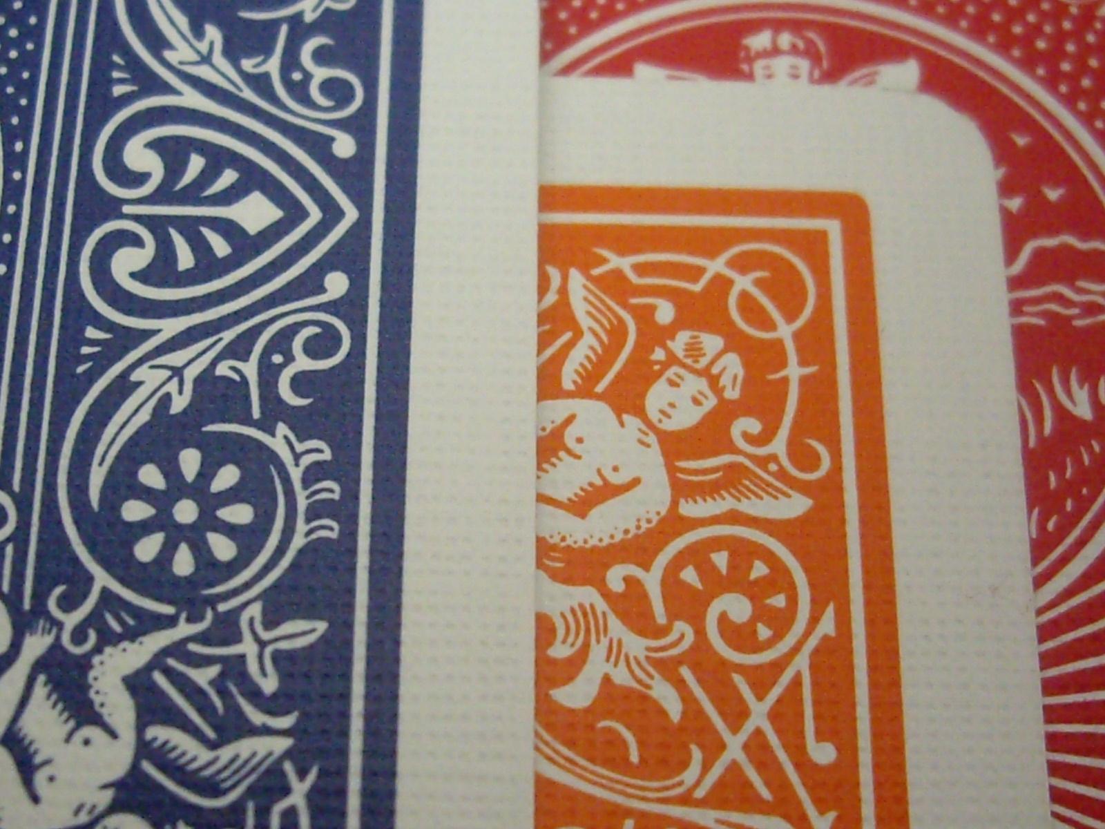 Bicycle Orange : Closeup