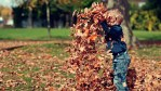 Five Reasons Fall Is Better Than Summer