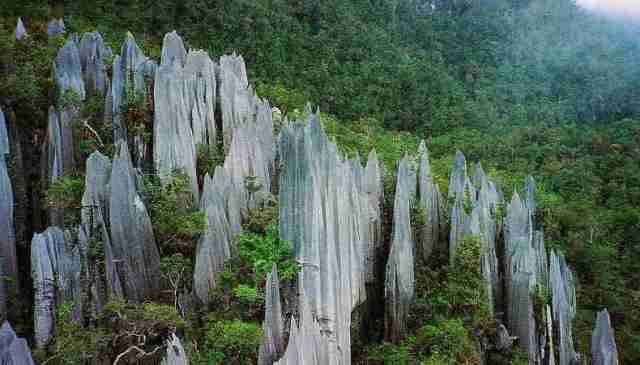Pinnacles at Mulu Park