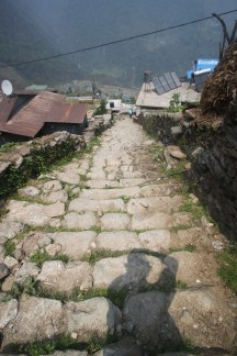 The village of Chomrong sits on a hill. We walked down the steep steps, anticipating our inevitable return when we would have to walk all the way back up...