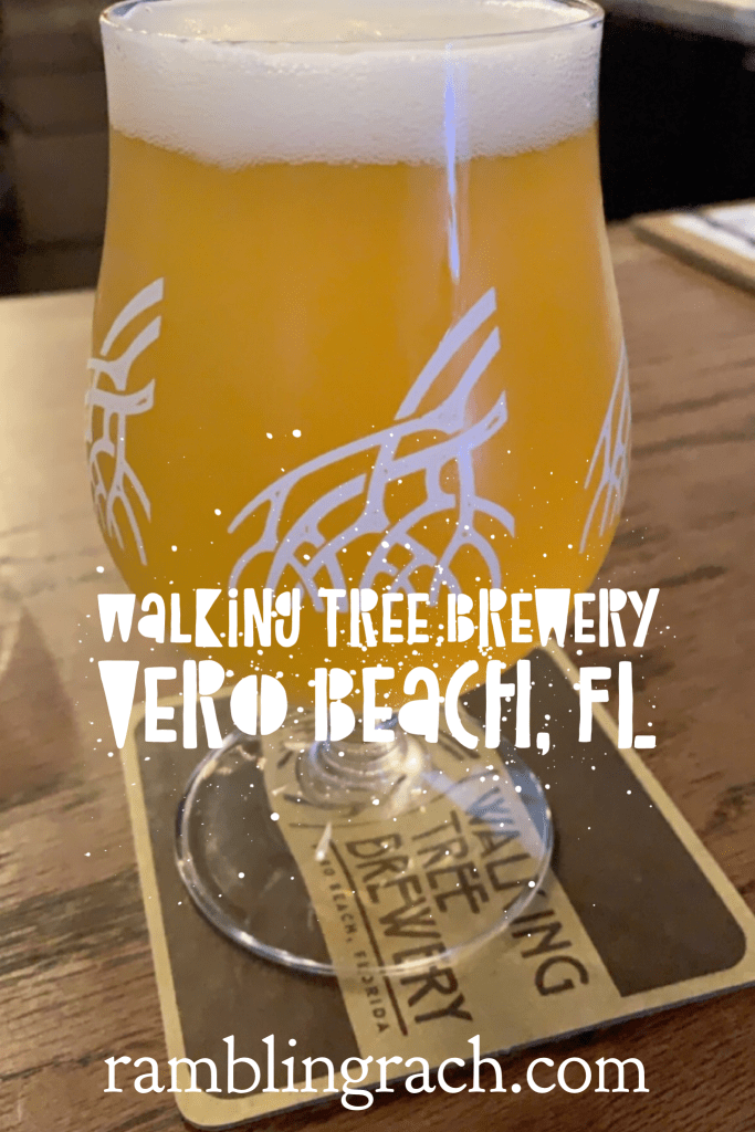 Walking Tree Brewery Sunny T tangerine gose