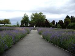 garden-remembrance-3