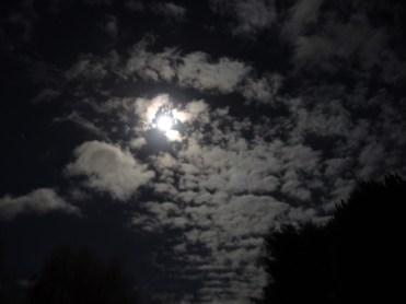 moon-nov-1