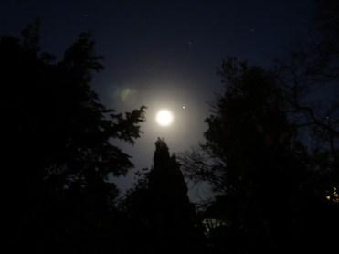 moon-270116