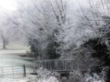 frosty-park-1