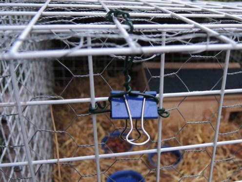 bulldog-clip-200417-a