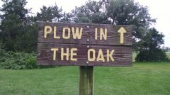 The plow in the oak park