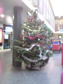 Christmas tree in SU