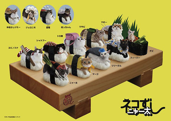 This is what the sushi cats look like when they are brought to your table. Yummy!
