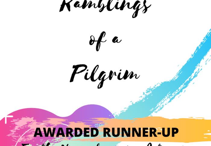 PREMIER DIGITAL AWARDS 2019