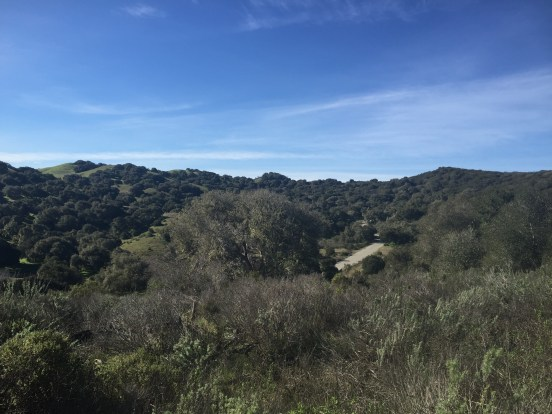 Looking west into Fort Ord