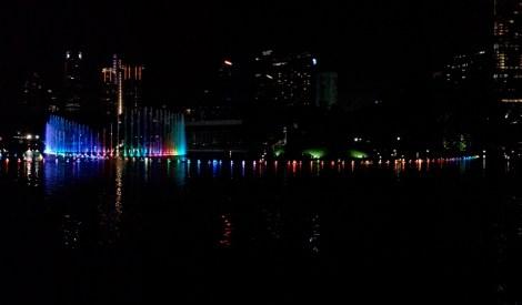 Night Light Show