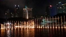 Night Light Show_2