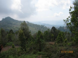 Hiking the Mountain_2