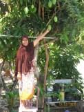 Salma's mom plucking mangos