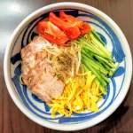 いの麺🍜14発目✨冷やし中華【極】