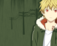 Yukine wallpaper