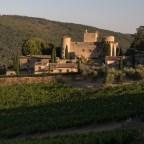 L'azienda bioviticola toscana Castello di Meleto inaugura il parco delle api