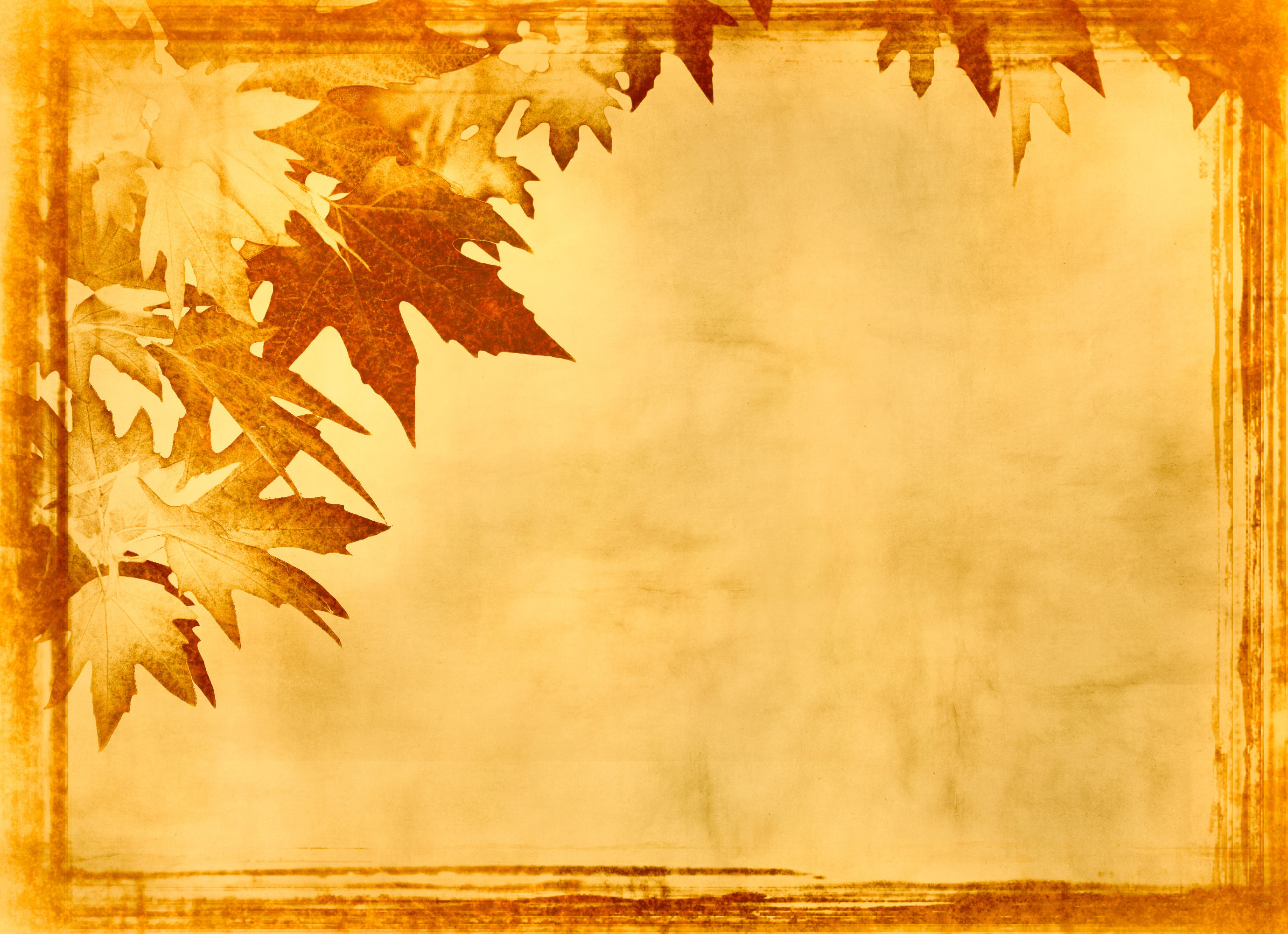 Wallpaper For Thanksgiving And Fall Фон природа для фотошопа