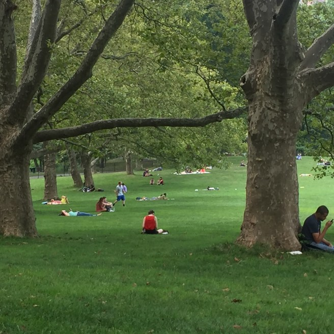 2016 Summer Streets: Central Park Sheep Meadow