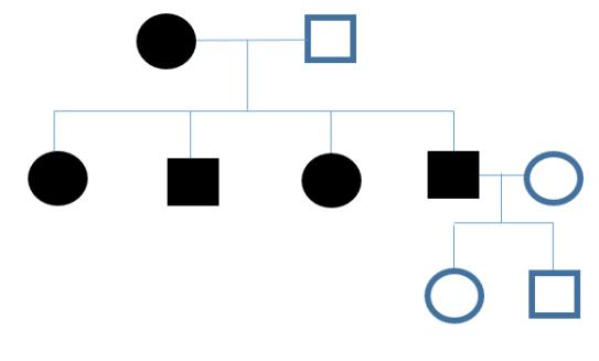 cytoplasmic gene