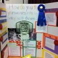 Science fair ramona elementary schoolhemet unified school district