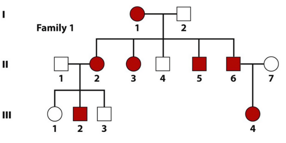 Principles of Heredity