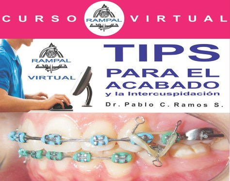 tips VIRTUAL - copia