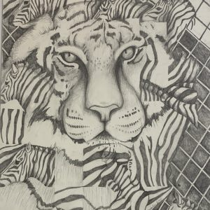 Mary Wahr Pencil Drawings