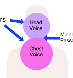 diagram of head and chest [ 1914 x 1074 Pixel ]