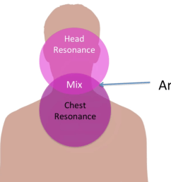 diagram of head and chest [ 1246 x 696 Pixel ]