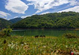 Foto/video: Oaza za očuvanje bosanskog brdskog konja u Lizopercima