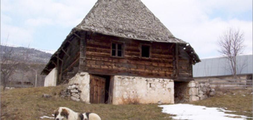 Foto/video: Štef i njegova odgajivačnica Tornjaka