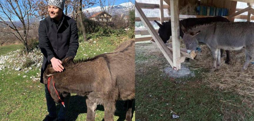 Slavišu je prizivalo ognjište pradjedova pa je obnovio stare kuće, a pokreće i farmu magaraca