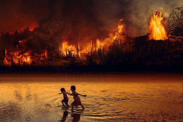 amazonas brann