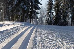 langrenn vinter ski