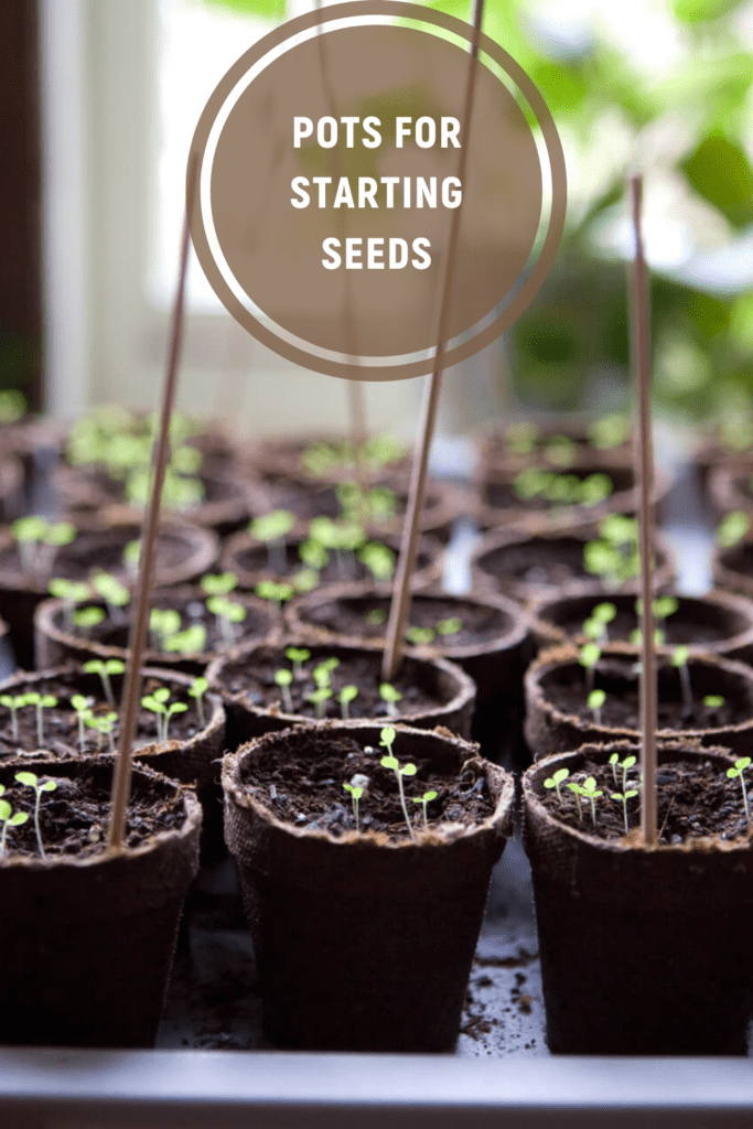 Pots For Starting Seeds