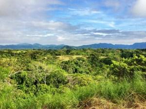 Costa Rica Organic Farm