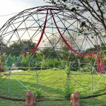 The Monkey Dome