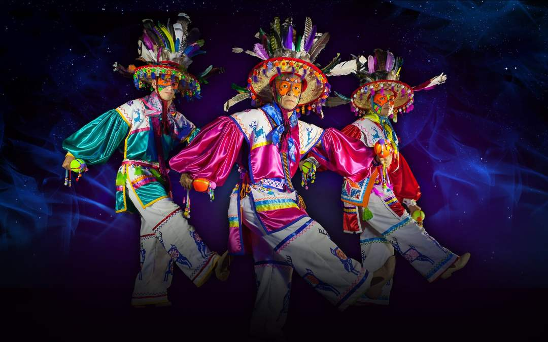 Los Cabos: Wirikuta Show Experience