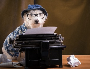 Are we writers like dogs?