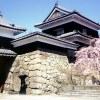 『2016 第13回上田城千本桜まつり』は2016年4月6日(水)から17日(日)まで開催!!