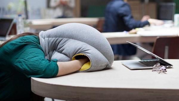 どこでも眠れる高級寝具「オーストリッチピロー・オリジナル」