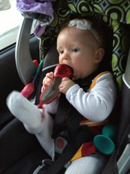 Eating her shoes on the way to Ames.
