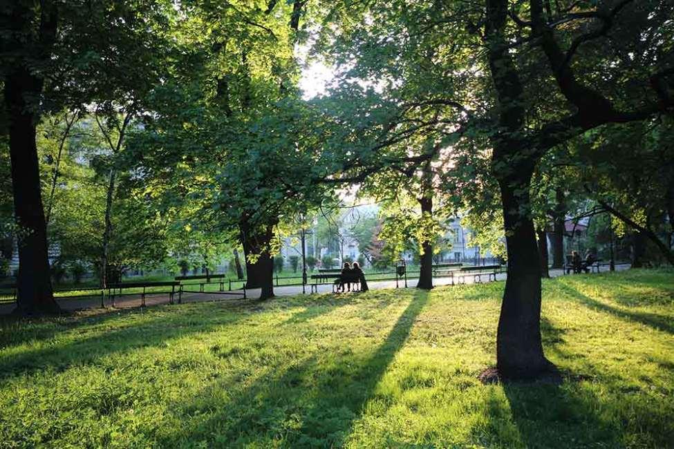 Krakow Central Park