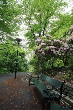 Pathways around Bergen