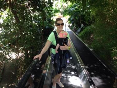 Ramp to the top of San Deigo Zoo