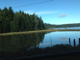 Roadside lake on way to Long Beach