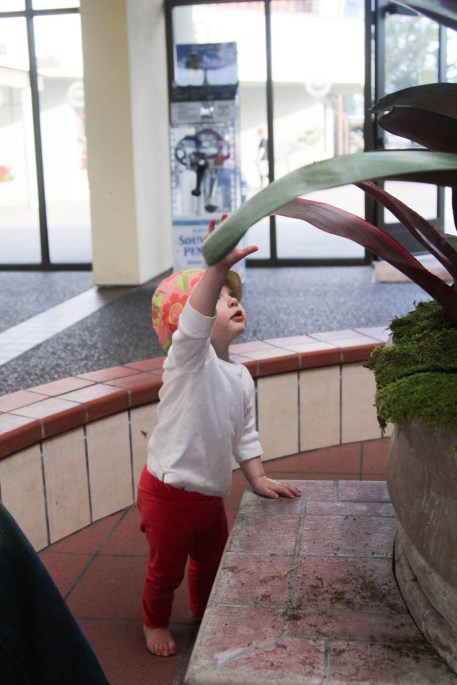 Ry playing in an empty water fountain at the Hearst Castle