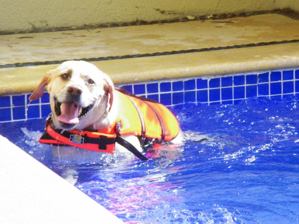 More swimming